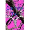 carcass tag