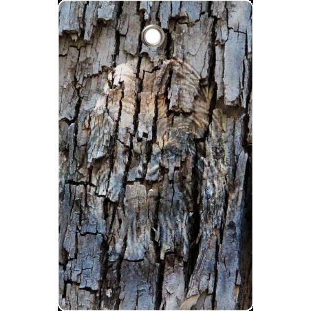 Bigfoot Carcass Tag