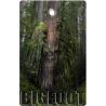 #Bigfoot Hunting Tag