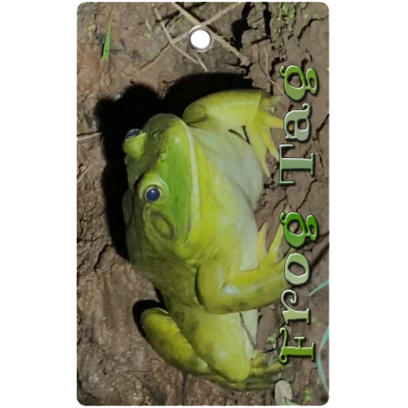 Bullfrog Tag