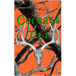 Realtree Orange and Green